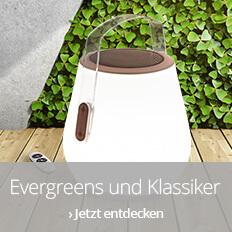 Evergreens und Klassiker für Ihren Garten