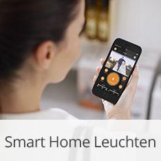Smart Home Leuchten von Steinel